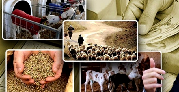 Pandemi sonrası tarım alanları değerlenecek kısa dönemli kiralamalar öne çıkacak