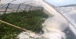 Antalyada çiftçiyi dolu vurdu