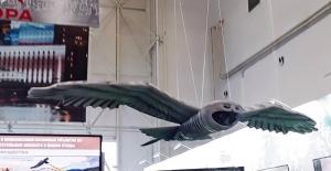 Ruslar baykuş kamuflajlı İHA'yı tanıttı
