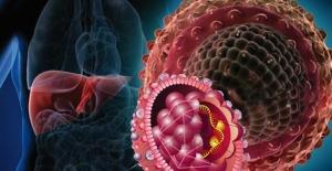 Uyarı geldi! COVID-19, Türkiye'nin Hepatit B ile mücadelesini zayıflatmamalı