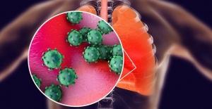 Doç. Dr. M. Eftal Avcı'dan koronavirüsten korunmak için anne adaylarına 10 öneri