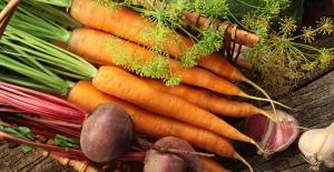 İşte mineral ve vitaminler bakımından zengin olan sağlıklı kök sebzelerin faydaları
