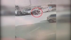İstanbul'da levyeli gaspçı dehşeti kamerada